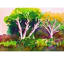 Woodlen scene, watercolor Photographic Print