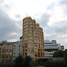 Yellow flats  by Aaron  Wahab
