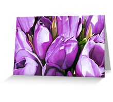 Purple Tulips in Coloured Pencil Greeting Card