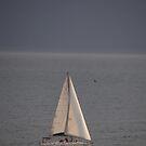 Sailing In The Last Light - Navegación A Vela El La Ultima Luz by Bernhard Matejka