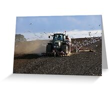 Tractor and gulls Greeting Card