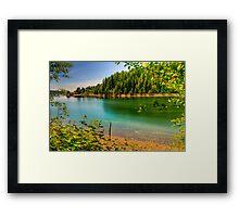 Washington Wonders Framed Print