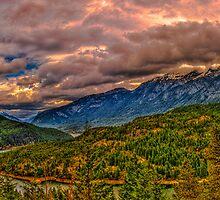 Nature Panoramic by Barrett Mand