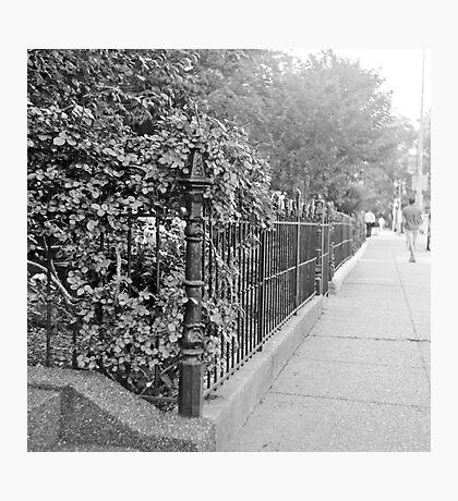 Suburb Photographic Print