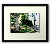 What you pass by but never see Framed Print