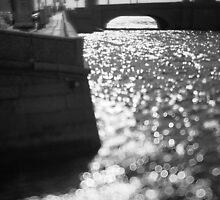 Flecks of sunlight by Dmitry Semenov