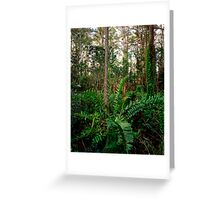 Leather Fern Portrait. Greeting Card