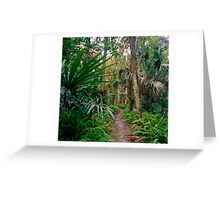 Fern Path. Highlands Hammock. Greeting Card