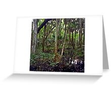 Swamp. Highlands Hammock. Greeting Card