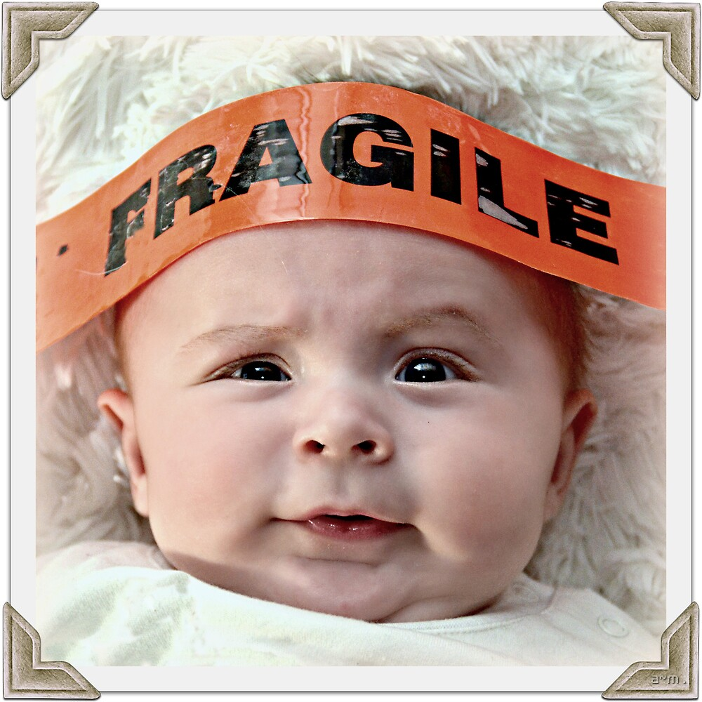 ~Fragile~ by a~m .