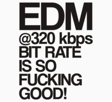 EDM at 320 kbps by DropBass