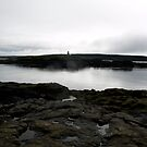Brier Island by phaedra1973