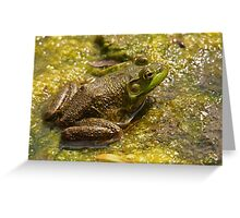 Frog March Greeting Card