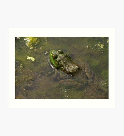 Frog April Art Print