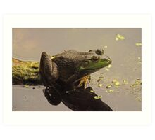 Frog June Art Print