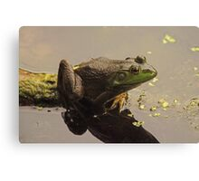 Frog June Canvas Print