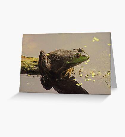 Frog June Greeting Card