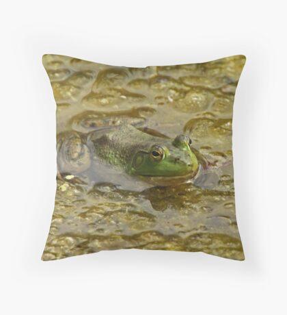 Frog October Throw Pillow