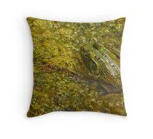 Frog November Throw Pillow
