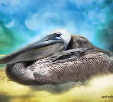 Old Mr. Pelican by Rhonda Strickland