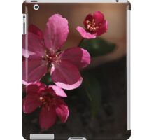 Crabapple Blossoms 5 iPad Case/Skin