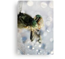 Lightly Watered Dragonfly Canvas Print