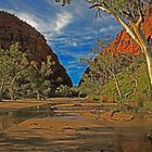 Red Centre Dreaming by James mcinnes