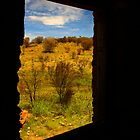 Window by James mcinnes