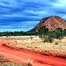 Australia Red Centre 2013 Calendar by James mcinnes