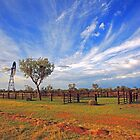 Cattle Yard by James mcinnes
