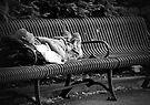 Sunday in the Park by KBritt