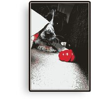 One Dog and his Kong Canvas Print