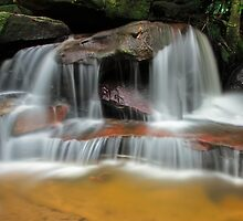 Falls of the Wilderness by Mark  Lucey