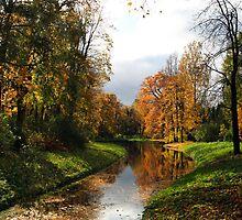 The Catherine Park, Pushkin (Tsarskoe Selo), Saint-Petersburg, Russia by torishaa