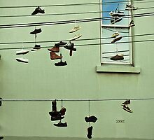 Shoes Fitzroy  by Adam Price