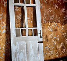 A Door Unhinged by Jill Fisher