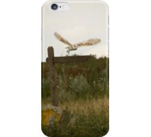 Barn owl on location. iPhone Case/Skin