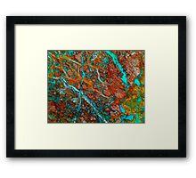 Tropical Labyrinth Framed Print