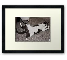 Who are You Looking At ?? Framed Print