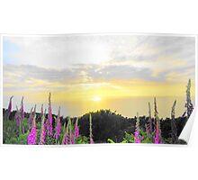 Foxglove sea sunset Poster