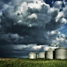 Graineries on Stormy Skies  by Myron Watamaniuk