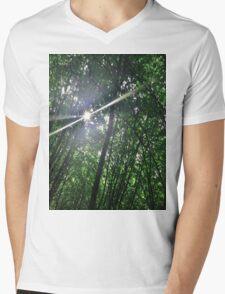 Forrest Fairy Mens V-Neck T-Shirt