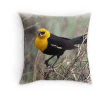 Yellow Headed Blackbird Throw Pillow