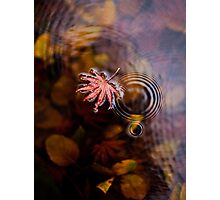 A Droplet Photographic Print