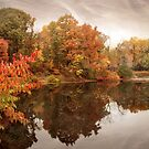 Reflections of Autumn by Jessica Jenney