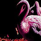 dreaming pink by NIKULETSH