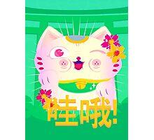 Maneki-neko (Lucky Cat) Photographic Print