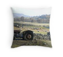 Rural idyll in the Yorkshire Dales Throw Pillow