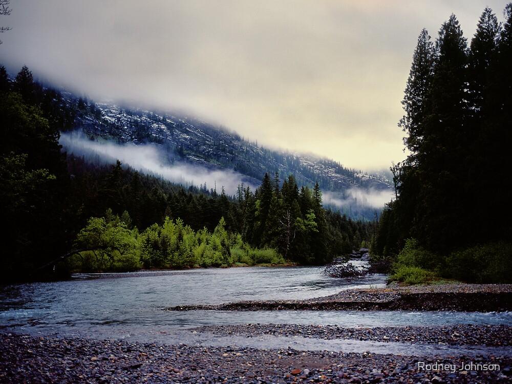 Avalanche Creek Confluence, Glacier N.P., Montana by Rodney Johnson