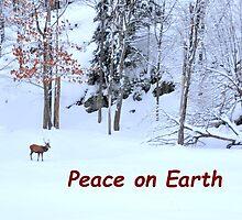 Winter Scene - Red Deer  by Poete100